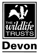 devon wildlife trusts